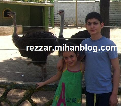 آویسا و برسام خواهر زاده های رضا گلزار