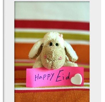 تبریک عید قربان از طرف محمدرضا گلزار
